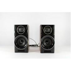 Компьютерные деревянные колонки акустика FnT 2031